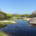 foto Archivio Ente Parco Nazionale dell_Asinara
