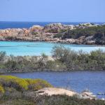 Foto: I. Chelo Archivio Ente Parco Nazionale dell_Asinara